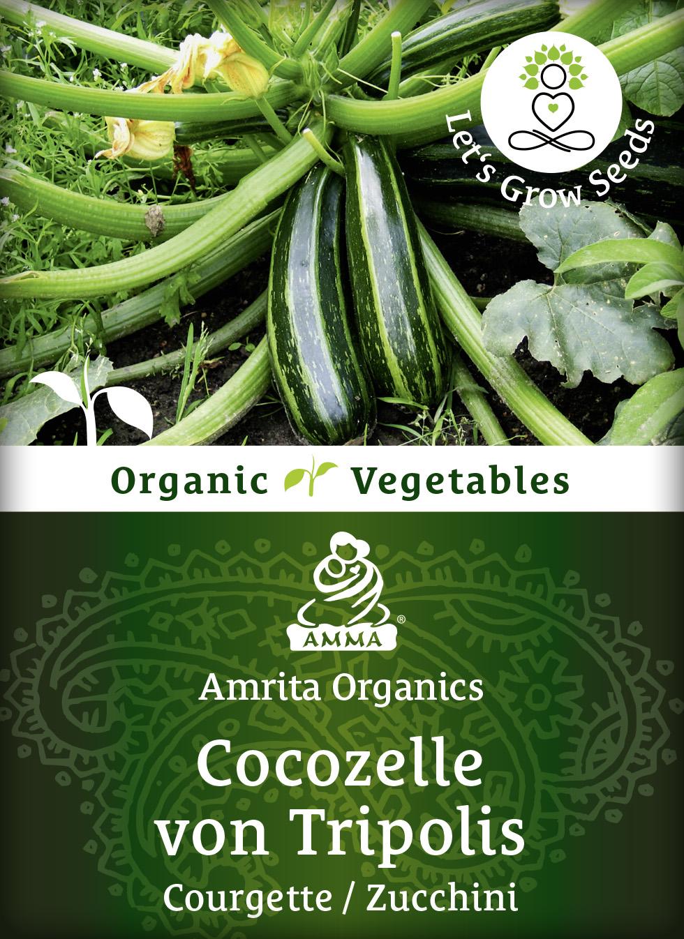 Zucchini, bio